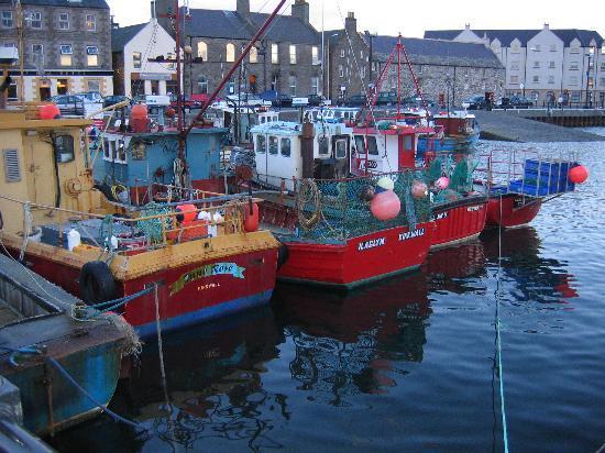 kirkwall-harbor-2004